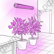"""Тепличный линейный светильник для рассады Т5/Т8 на базе эффективных 3Вт фитосветодиодов """"Фомальгаут"""" с настенным и потолочным креплением"""