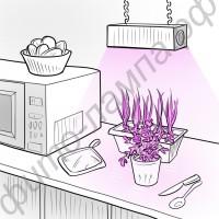 """Фитосветодиодная линзованная лампа для растений """"Скип"""""""